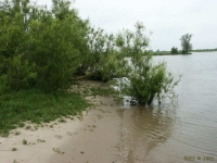 FotosRGES: River-Lek-shore-[NL-2002]-RGES